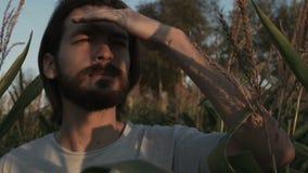 Homem considerável com a barba com a paisagem da natureza que olha algo filme