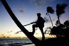 Homem contra o sol de ajuste Fotografia de Stock Royalty Free