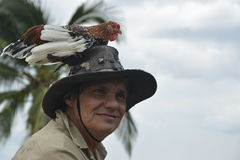 HOMEM DA GALINHA DE COSTA RICA TOPE imagem de stock