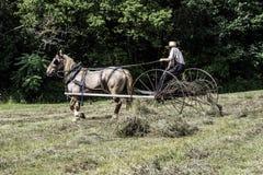 Homem de Amish imagem de stock royalty free
