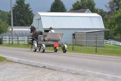 Homem de Amish que conduz o vagão fotografia de stock