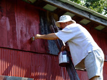 Homem de meia idade na pintura da escada Fotos de Stock