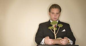 Homem de negócio com bonsais 3 imagens de stock royalty free