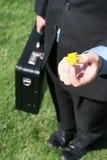 Homem de negócio com flor fotografia de stock