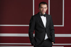 Homem de negócio em um terno em uma parede vermelha Foto de Stock Royalty Free