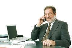 Homem de negócio sênior Imagem de Stock Royalty Free