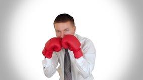 Homem de negócios Boxing contra o branco, metragem conservada em estoque vídeos de arquivo