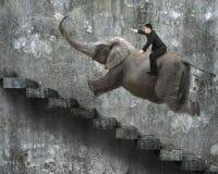 Homem de negócios com apontar a equitação do gesto do dedo no elefante imagens de stock