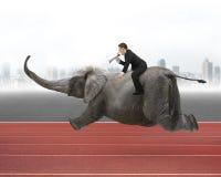 Homem de negócios com utilização da equitação do orador no elefante Fotos de Stock Royalty Free