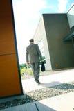 Homem de negócios e edifícios   Imagem de Stock Royalty Free