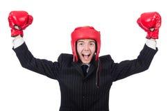 Homem de negócios engraçado do pugilista Imagem de Stock