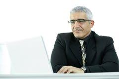 Homem de negócios que usa o computador portátil imagens de stock royalty free