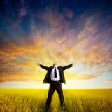 Homem de negócios no campo Foto de Stock Royalty Free