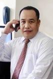 Homem de negócios no telefone Imagens de Stock Royalty Free