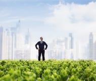 Homem de negócios nos óculos de sol e nas mãos nos quadris que estão em um campo verde com skyline da cidade no fundo foto de stock