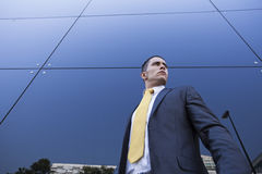 Homem de negócios novo confiável Imagens de Stock Royalty Free