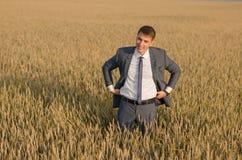 Homem de negócios novo do fazendeiro em um campo de trigo Fotografia de Stock