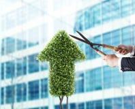 Homem de negócios que corta e ajusta uma planta dada forma como um stats da seta Conceito da empresa startup rendição 3d Foto de Stock Royalty Free