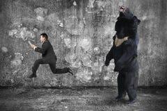 Homem de negócios que guarda a tabuleta que corre de um urso irritado imagem de stock