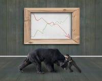 Homem de negócios que luta contra o urso com linhas de tendência whiteboard Fotos de Stock Royalty Free