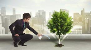 Homem de negócios que molha a árvore verde no fundo da cidade Imagem de Stock