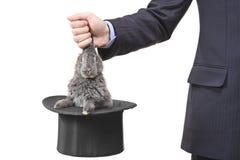 Homem de negócios que retira um coelho fotografia de stock