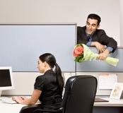 Homem de negócios que traz flores do colega de trabalho Imagens de Stock