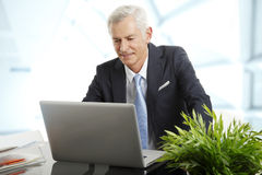 Homem de negócios superior ativo Foto de Stock