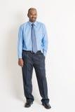 Homem de negócios indiano Imagem de Stock
