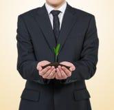 Homem de negócios que guarda a planta Fotos de Stock