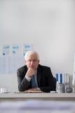 Homem de negócios superior executivo Fotografia de Stock Royalty Free