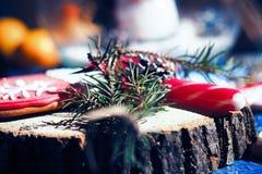 Homem de pão-de-espécie de Santa Claus Fotos de Stock