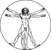 Homem de Vitruvian Fotografia de Stock Royalty Free