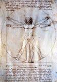 Homem de Vitruvian - Leonardo Da Vinci Fotos de Stock Royalty Free