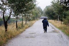 Homem desconhecido que anda ao longo de uma estrada nas madeiras, em um dia chuvoso, w Fotografia de Stock