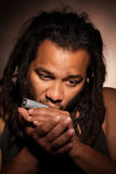 Homem do Afro que joga a harmônica fotos de stock royalty free