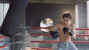 Homem do esporte durante o treinamento no gym vídeos de arquivo