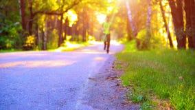 Homem do esporte que corre na estrada asfaltada Parque rural da cidade Raios verdes da floresta e do sol da árvore no horizonte vídeos de arquivo
