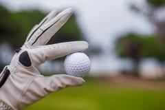 Homem do jogador de golfe que guarda a bola de golfe em sua mão Fotografia de Stock Royalty Free
