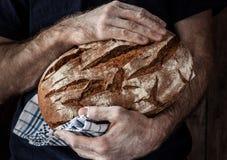 Homem do padeiro que guarda o naco de pão rústico nas mãos Foto de Stock