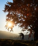 Homem do turista do caminhante com a câmera no vale gramíneo no fundo da paisagem da montanha sob a árvore grande fotos de stock