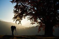 Homem do turista do caminhante com a câmera no vale gramíneo no fundo da paisagem da montanha sob a árvore grande imagem de stock