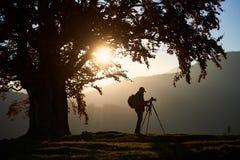 Homem do turista do caminhante com a câmera no vale gramíneo no fundo da paisagem da montanha sob a árvore grande imagens de stock royalty free