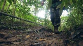 Homem do viajante que caminha na viagem densa do verão do quando da floresta úmida Homem do turista que viaja na opinião de baixo filme