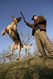Homem e cão Fotografia de Stock Royalty Free