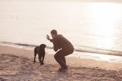 Homem e cão na praia Fotografia de Stock