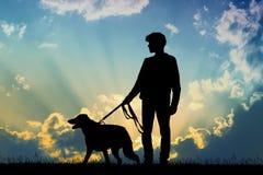 Homem e cão no por do sol ilustração royalty free