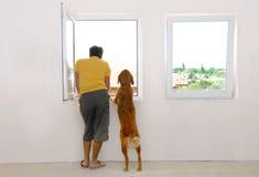 Homem e cão que olham através do indicador Fotos de Stock