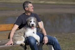 Homem e cachorrinho no banco de parque fotos de stock