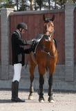 Homem e cavalo Fotografia de Stock